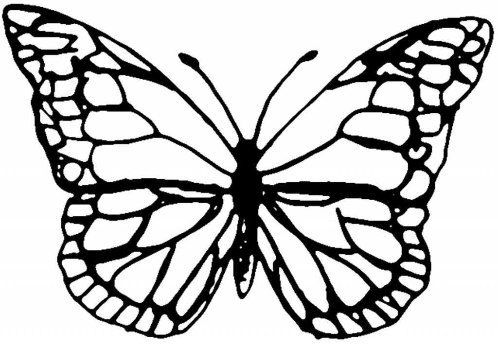 1024x714 Butterfly Outline Drawing Butterfly Outline Clipart Clipart Panda