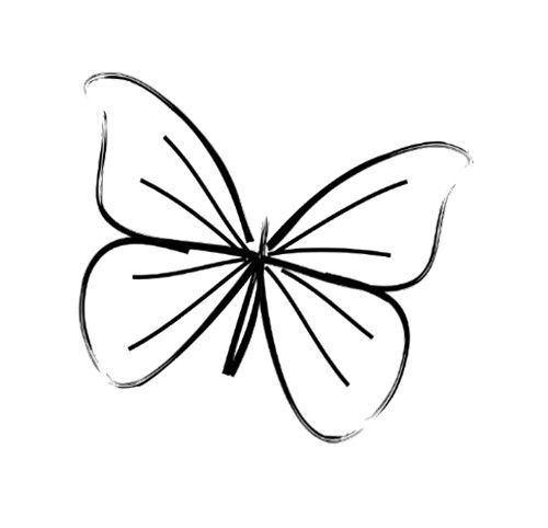 500x482 20 best Small Butterfly Tattoo Outline Drawing images