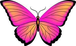 300x182 Clipart Butterfly Outline Clipart Free Clipart Images