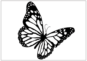 300x212 Printable Fun Butterfly Coloring Pages for Kids
