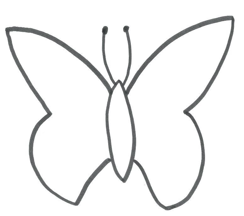 776x687 butterfly outline printable – startupharbor.me