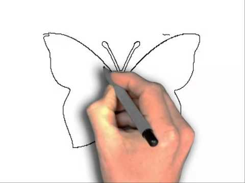 480x360 how to draw butterfly outline