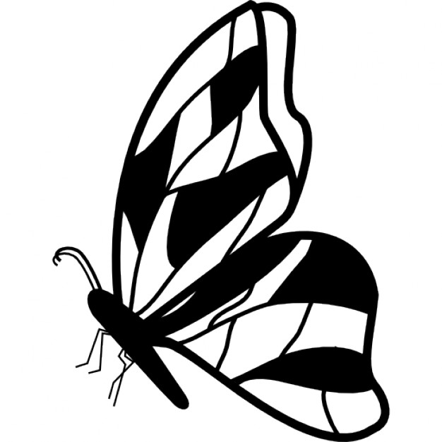 626x626 side profile butterfly clipart outline