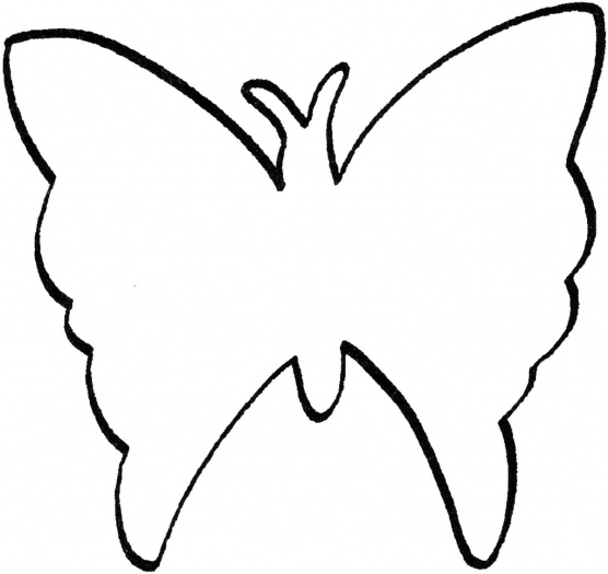 556x525 Butterfly outline for Toddler room. Girls Room Ideas