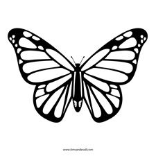 225x225 Free Butterfly Stencil Monarch Butterfly Outline and Silhouette