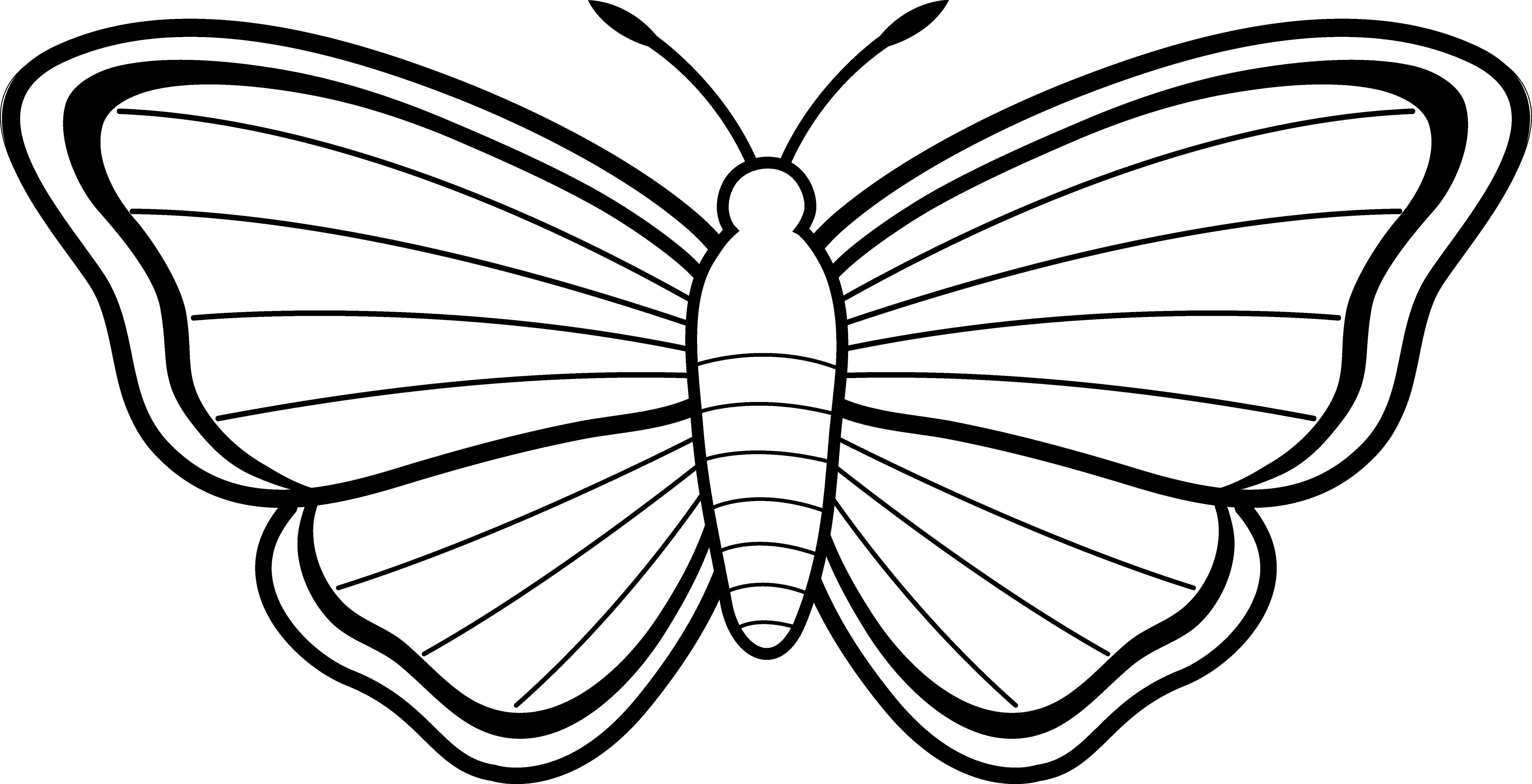 6629x3394 Butterfly Outlines Clipart