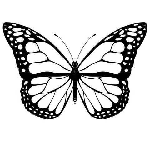 480x480 152 Best Butterflies Silhouettes Graphics Images