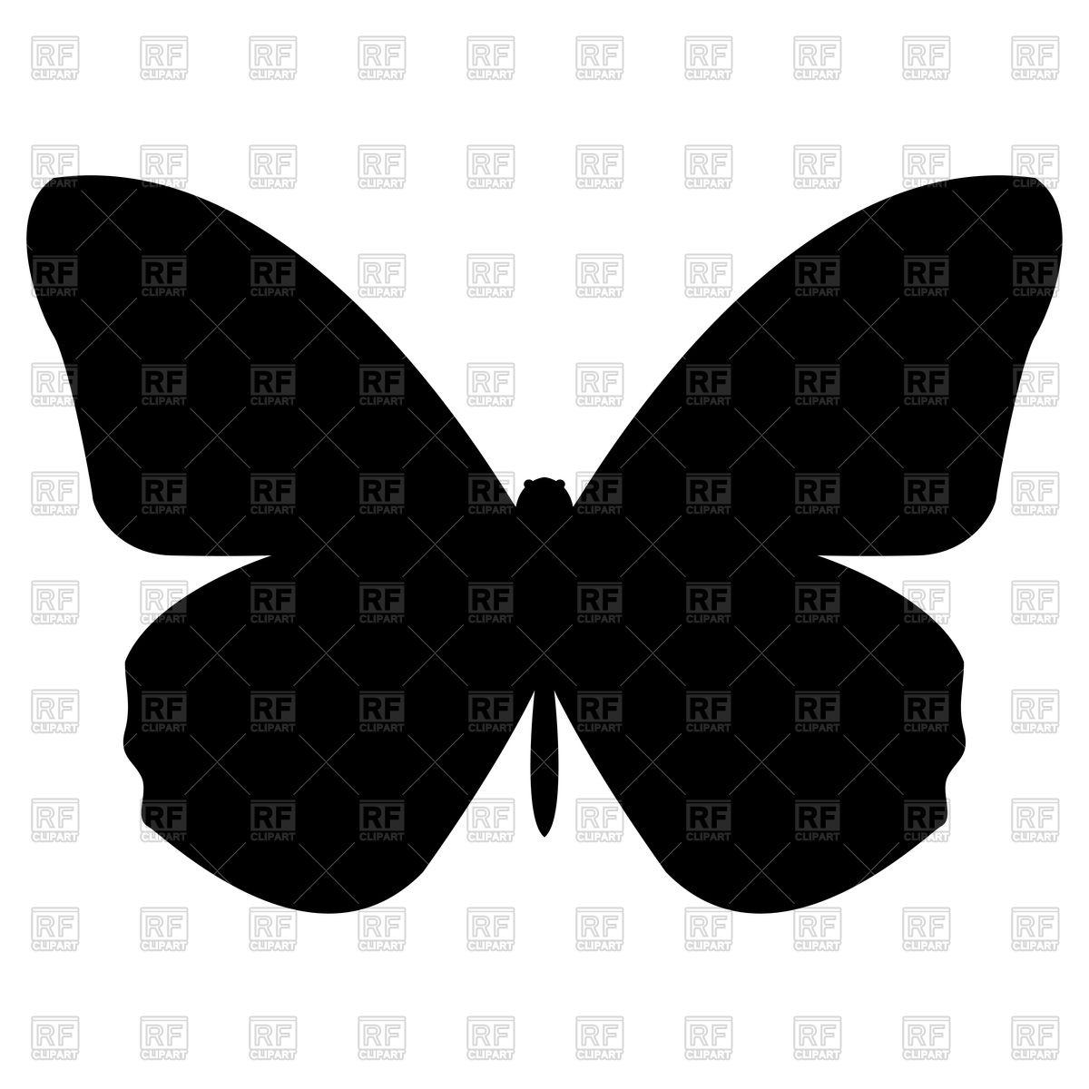 1200x1200 Butterfly
