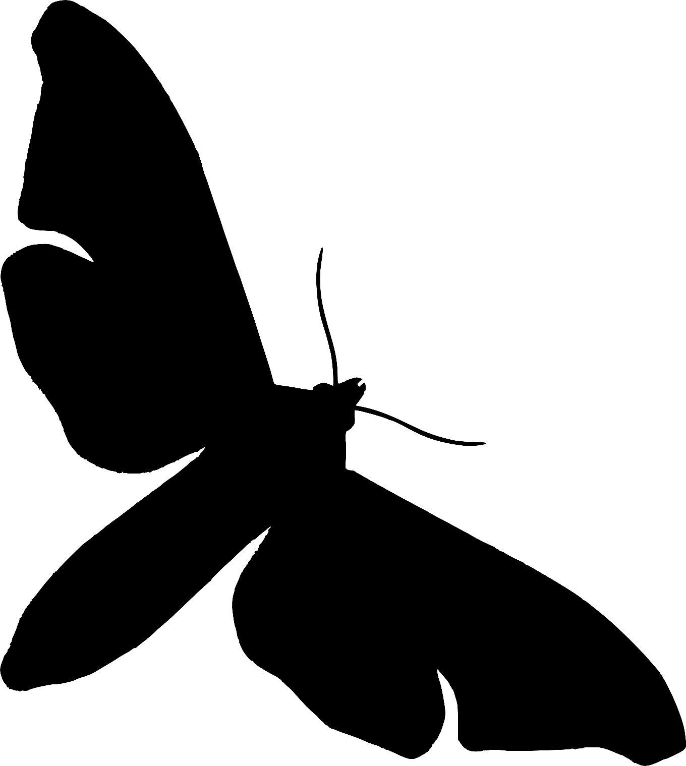 1360x1519 Moth Clipart Silhouette