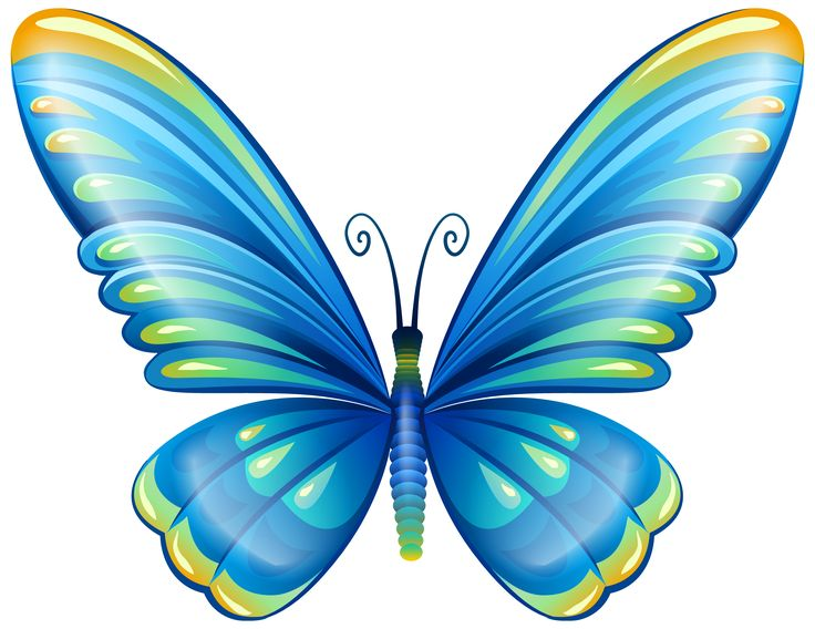 736x568 Large Art Blue Butterfly Png Clip Art Image Butterfly'S