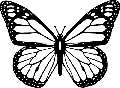 500x369 Vector Clip Art Of Black And White Butterfly With Wide Spread