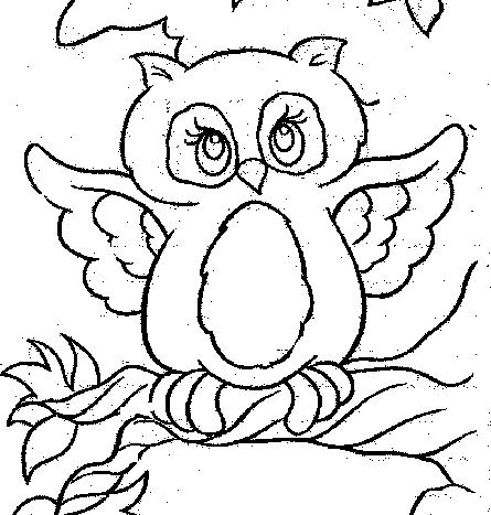 445x467 108 Best Coloring Pages Images Draw Books And Cabin