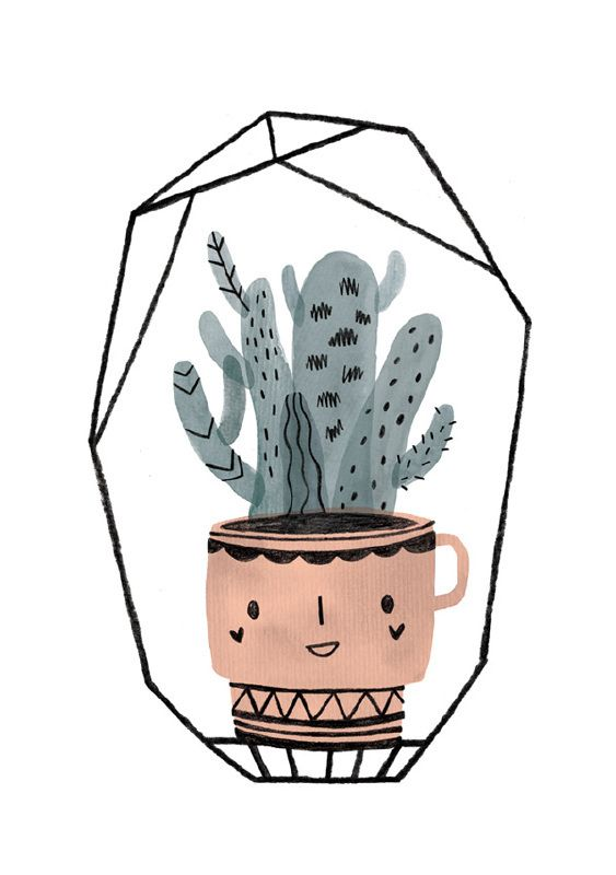 563x800 211 Best Cactus Illustrations Images Draw, Drawing