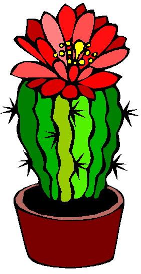 281x545 Cactus flower clipart