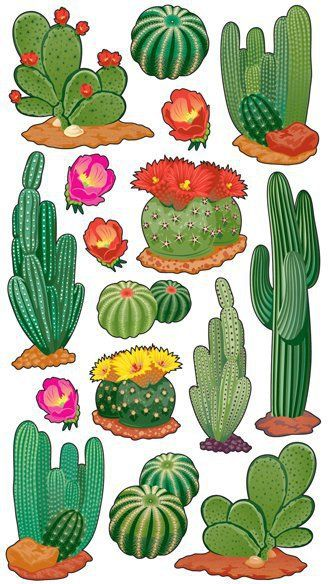 328x584 1314 Best Cactus Art Images Floral, Amor And Cactus
