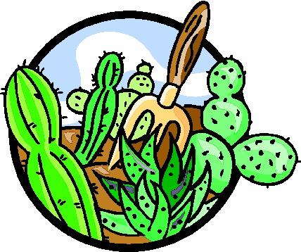 428x358 Cactus Clip Art 12