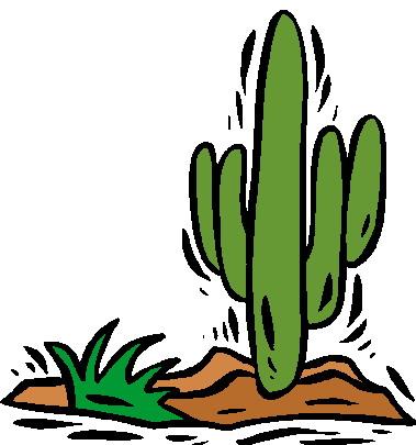 379x405 Cactus Clip Art 13