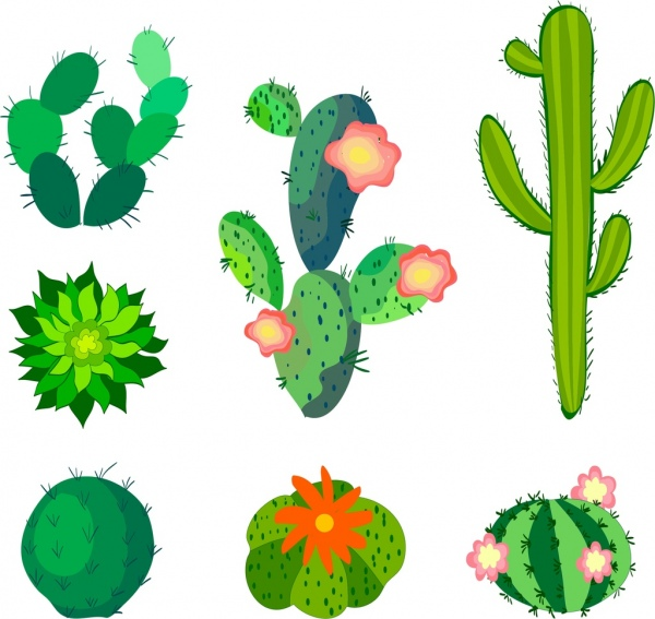 600x567 Cactus Free Vector Download (111 Free Vector) For Commercial Use