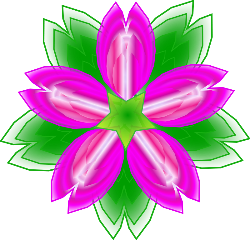 800x768 Graphics For Cactus Flower Graphics
