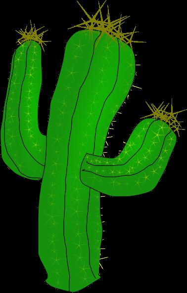378x593 Hd Cactus Cliparts 220046