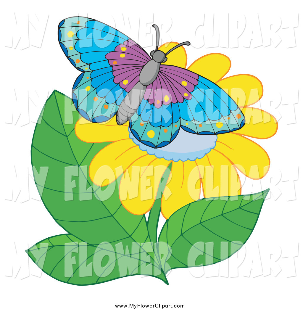 1024x1044 Royalty Free Butterfly Stock Flower Designs