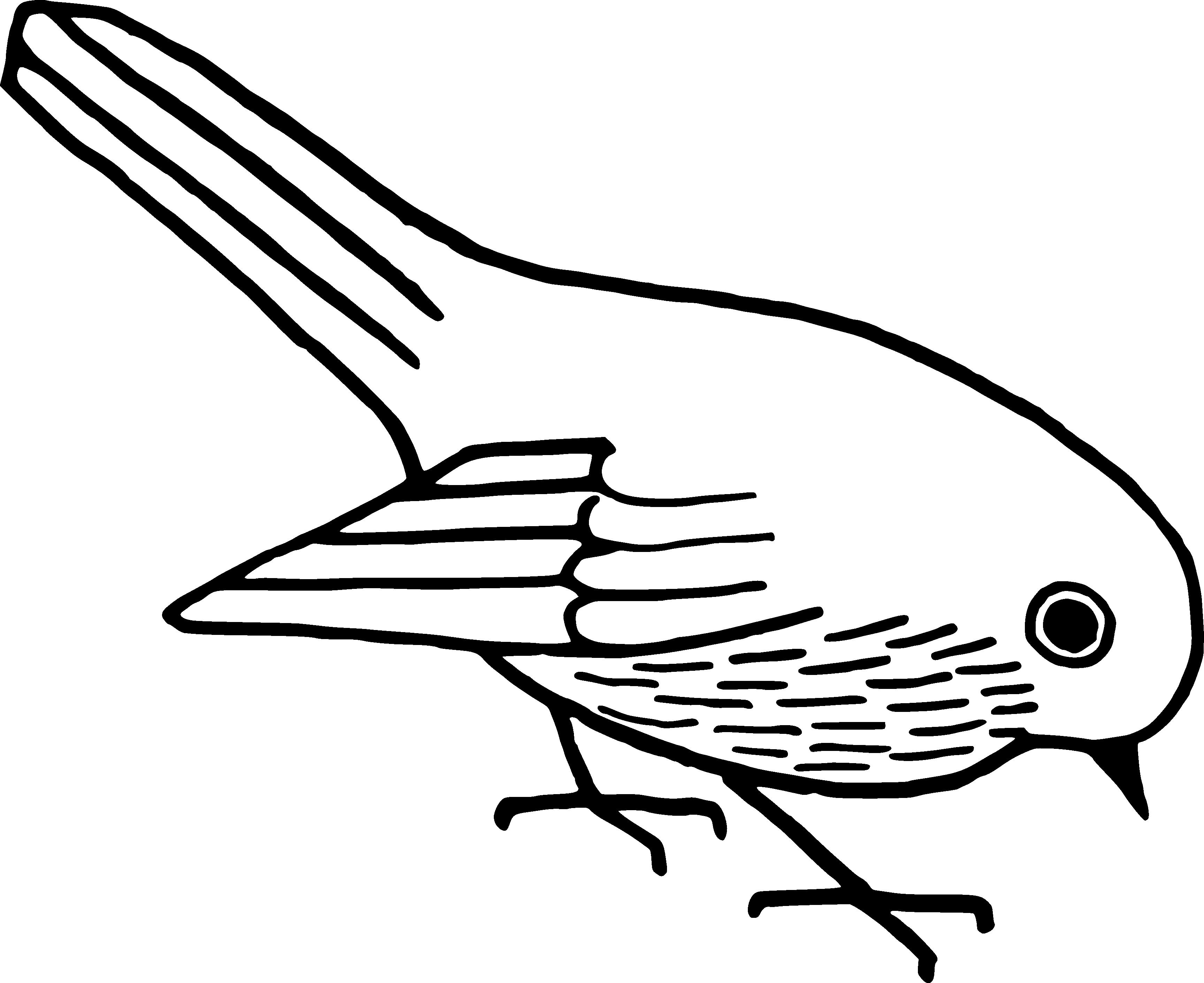 3455x2821 White Bird Clip Art