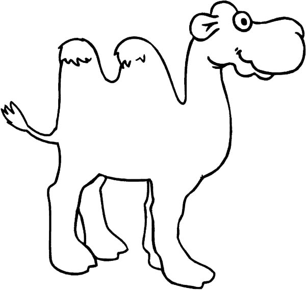 600x568 Bactria Camel Pencil Sketch Coloring Pages