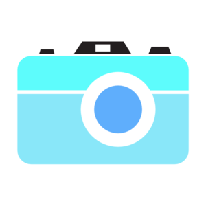 300x300 Camera Icon Png, Svg Clip Art For Web