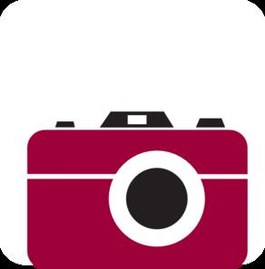 292x297 Camera Shiraz Clip Art