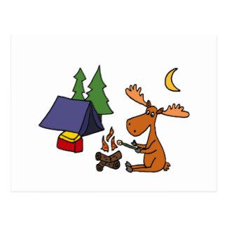 324x324 Camping Cartoon Postcards Zazzle