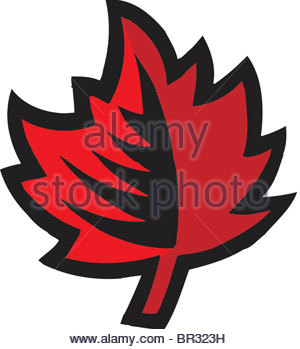 300x349 Canada Maple Leaf Outline Stock Photo, Royalty Free Image