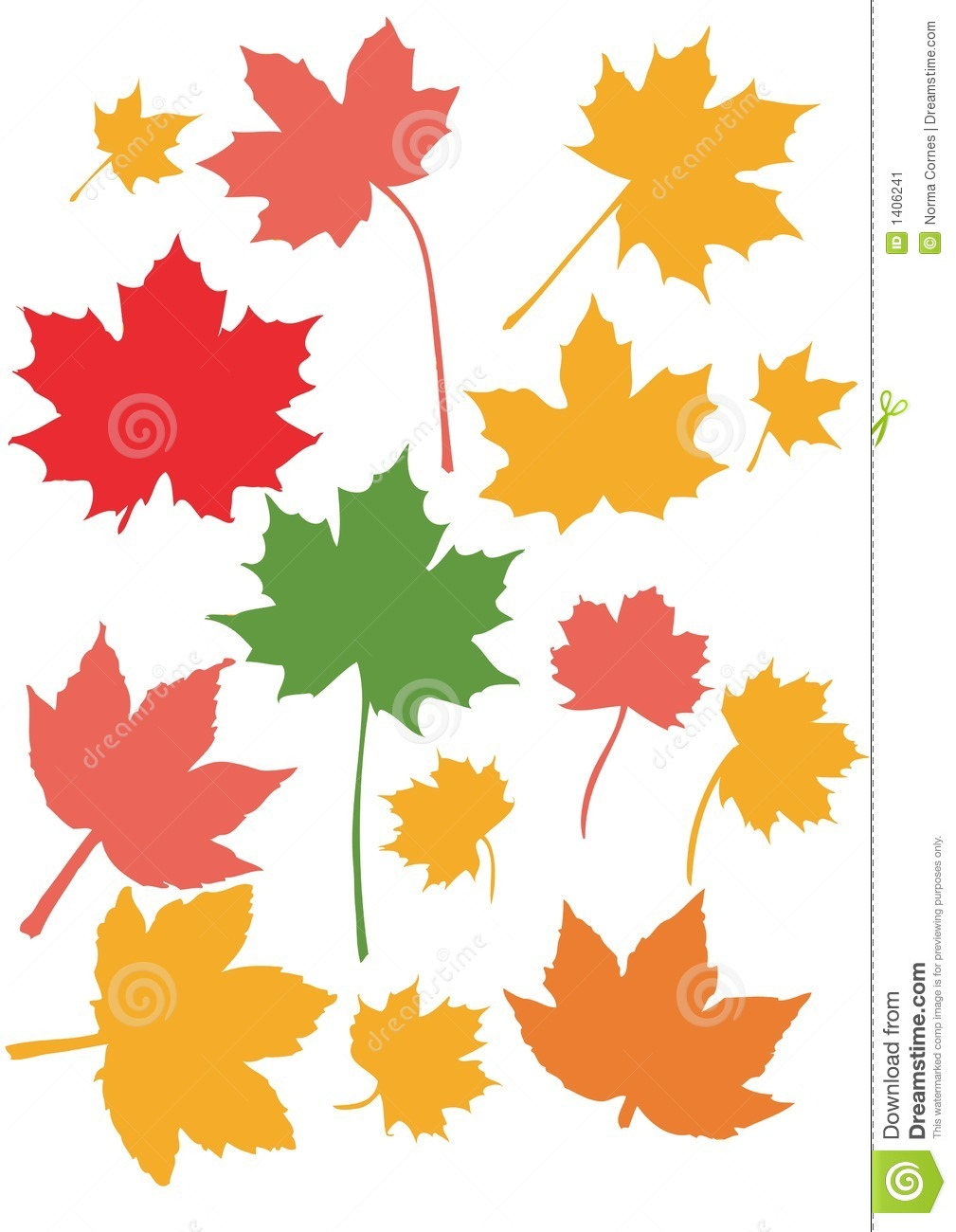 1009x1300 Maple Leaf Clipart Colored Leave