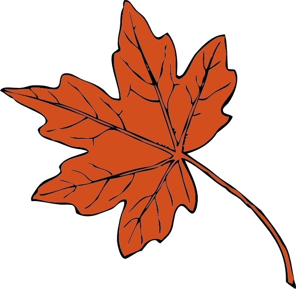 600x585 Maple Leaf clip art Free vector in Open office drawing svg ( svg