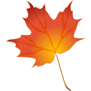300x300 Orange Maple Leaf Clipart