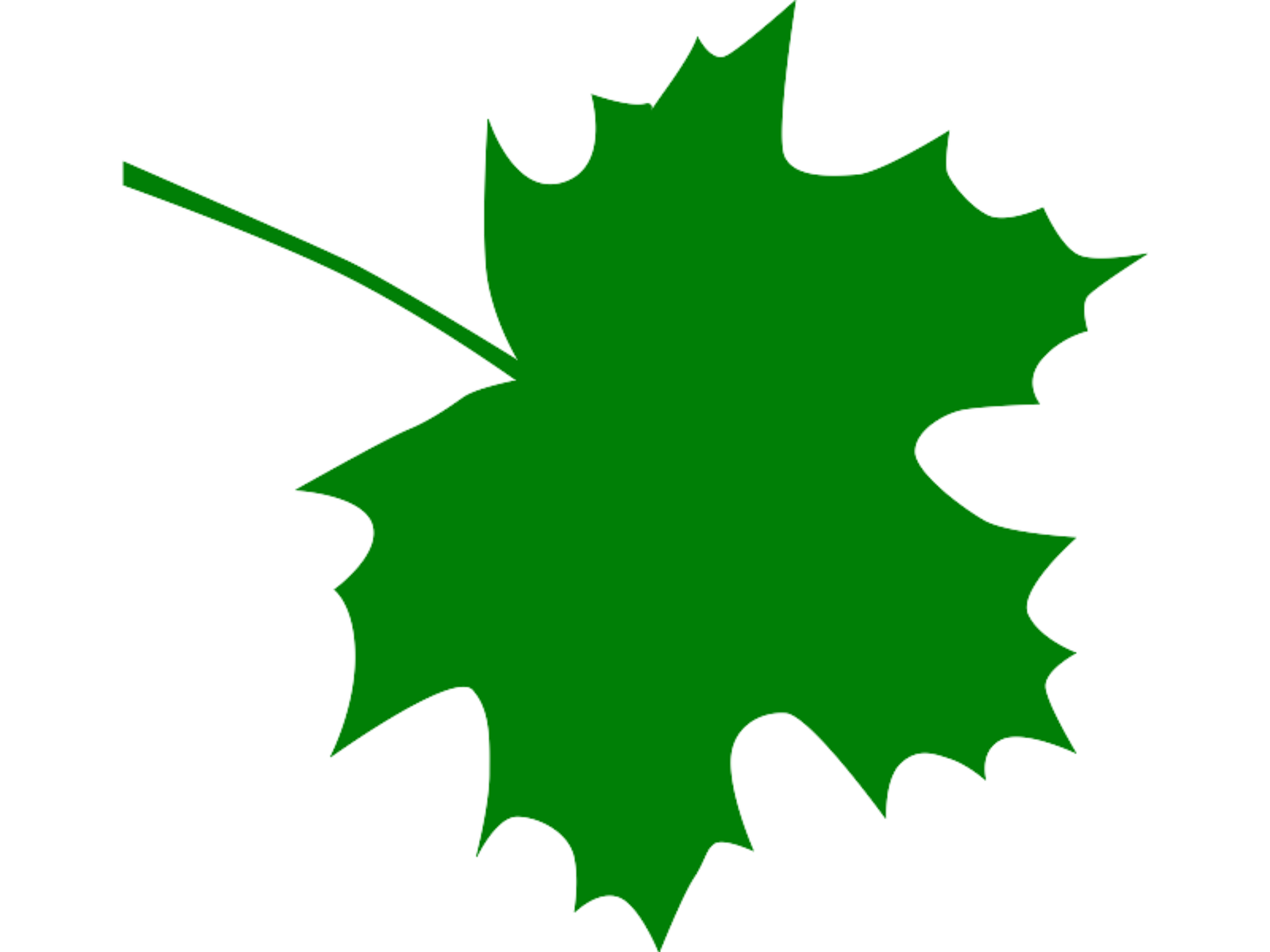 2000x1500 Sugar maple leaf clipart kid