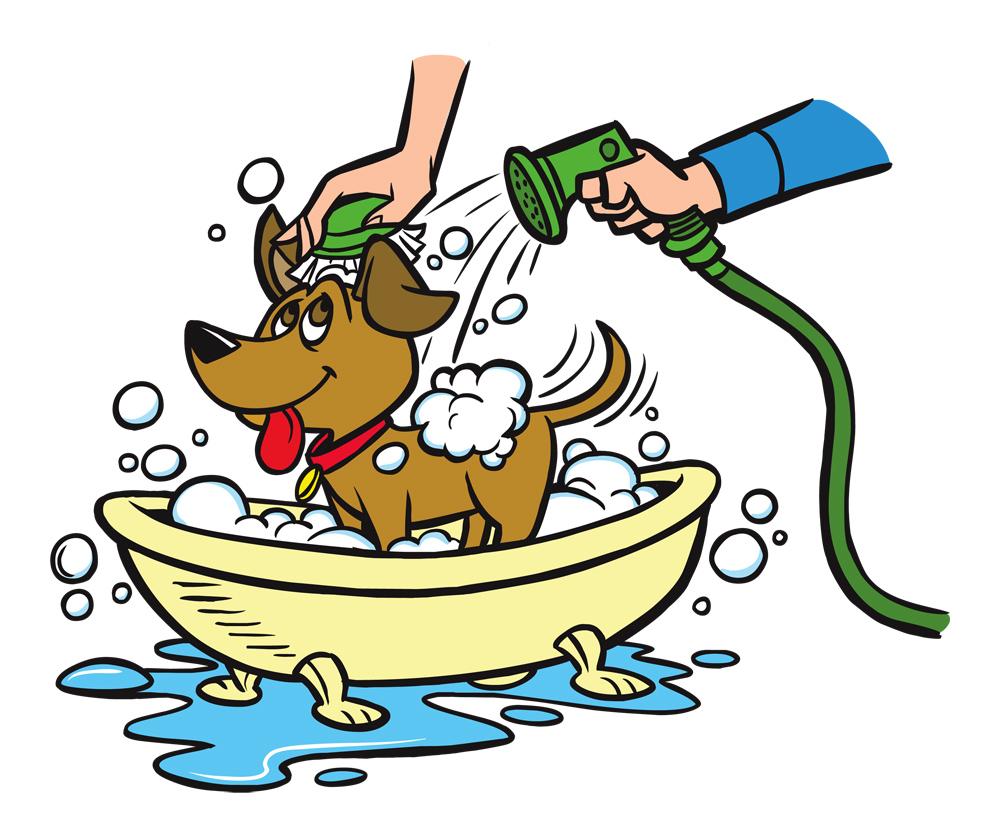 1000x834 Dog Wash Clipart