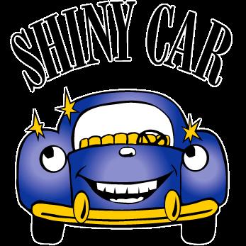 347x347 Shiny Car Car Wash And Shiny Dog Dog Wash