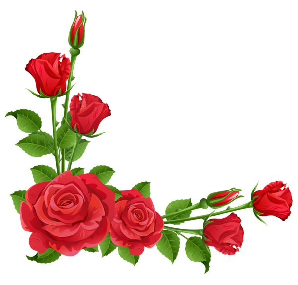 600x573 Beautiful Red Rose With Green Leaf Corner Border Design For Eid