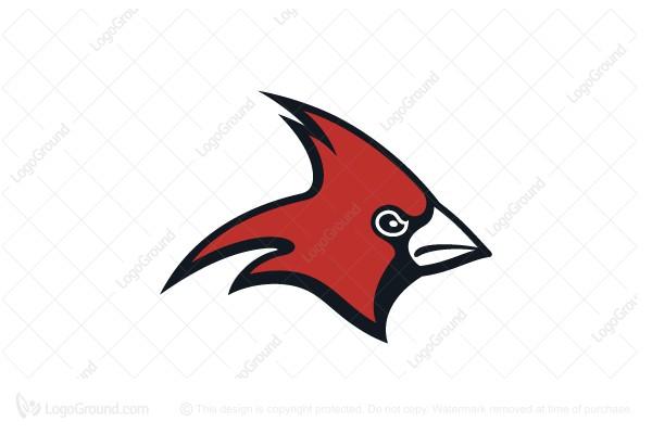 600x400 Cardinal Bird Logo Design Logo