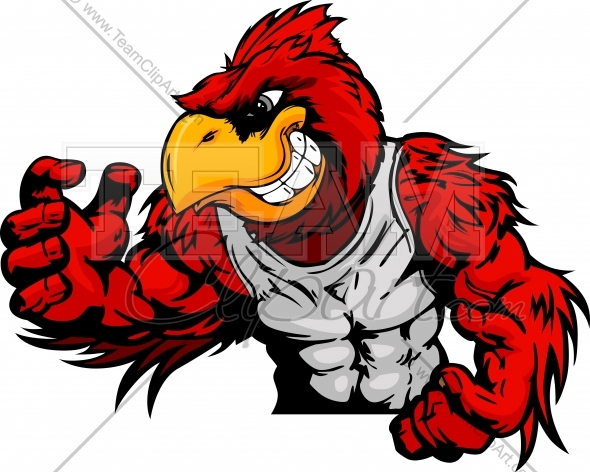 590x472 Cardinal Or Red Bird Wrestler In Wrestling Pose Cartoon Vector