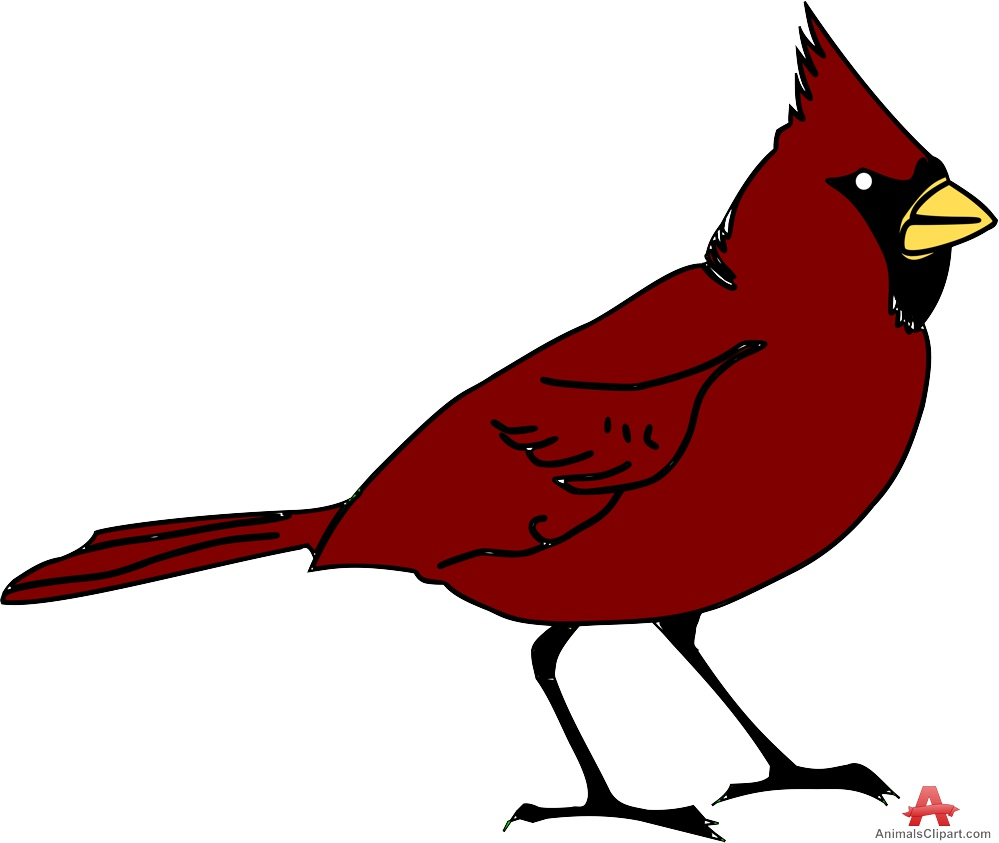 999x843 Red Cardinal Bird Free Clipart Design Download
