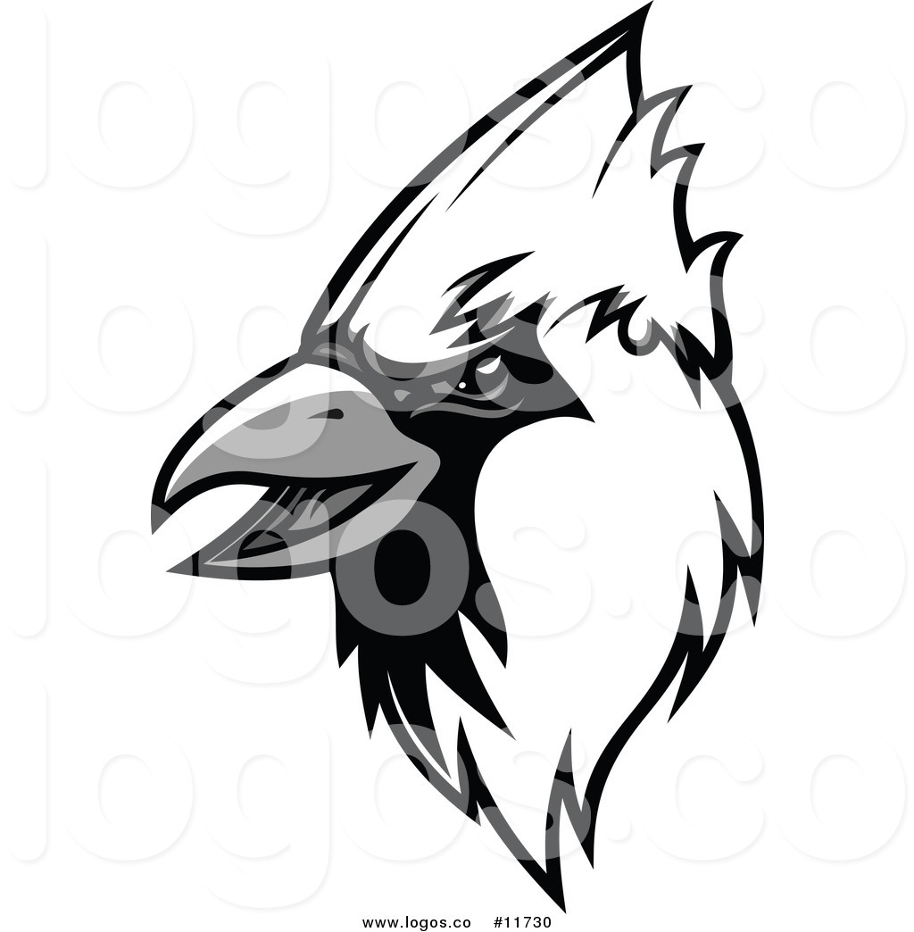 1024x1044 Royalty Free Vector Of A Grayscale Cardinal Mascot Head Logo By