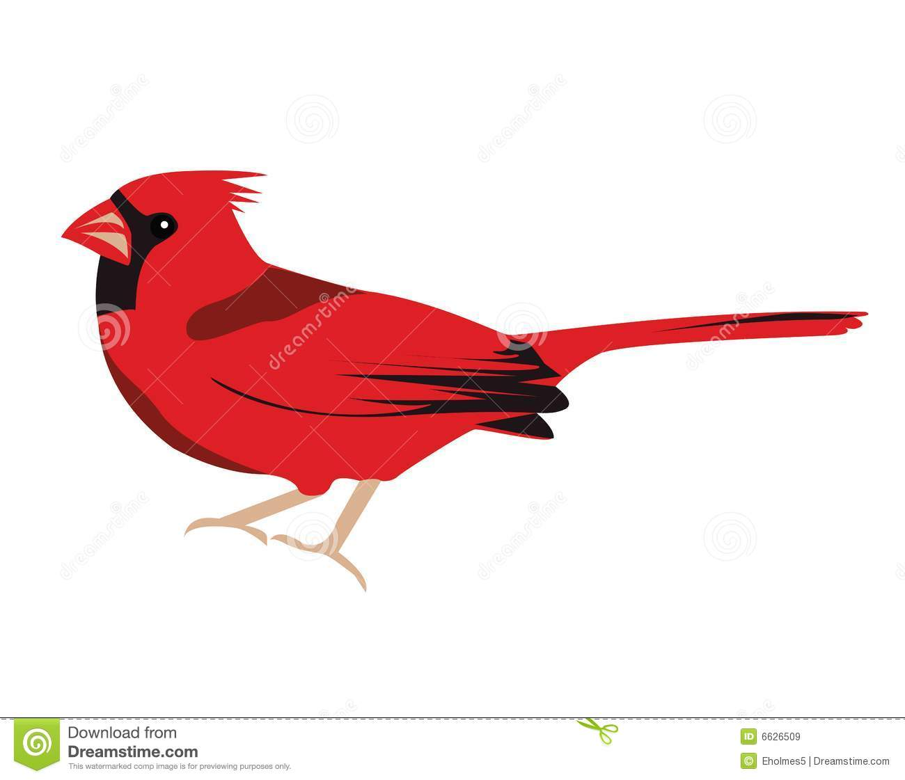 Cardinal Cartoon Clipart