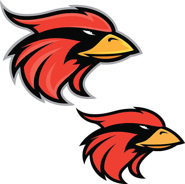 612x610 Cardinal Clipart Bird Head