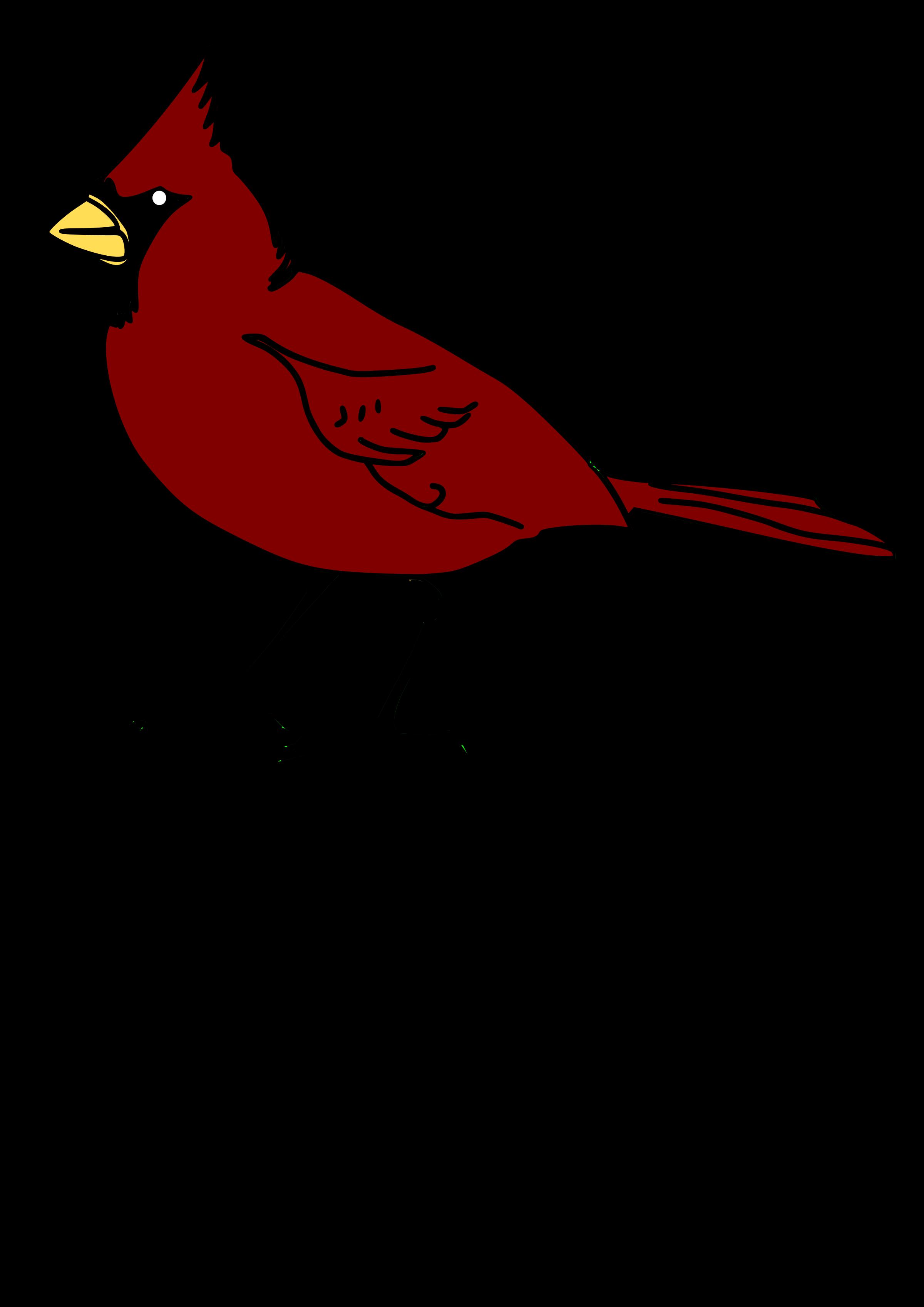 2400x3394 Cardinal Clipart Face