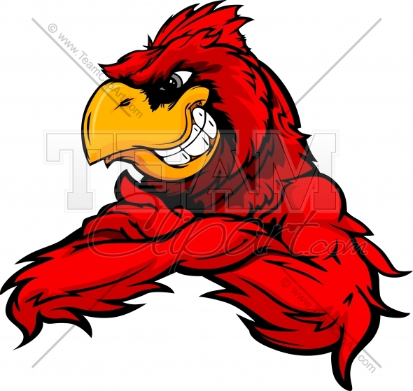 590x559 Cardinal Or Red Bird With Crossed Arms Vector Cartoon