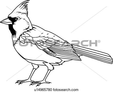 450x370 Cardinal Clip Art