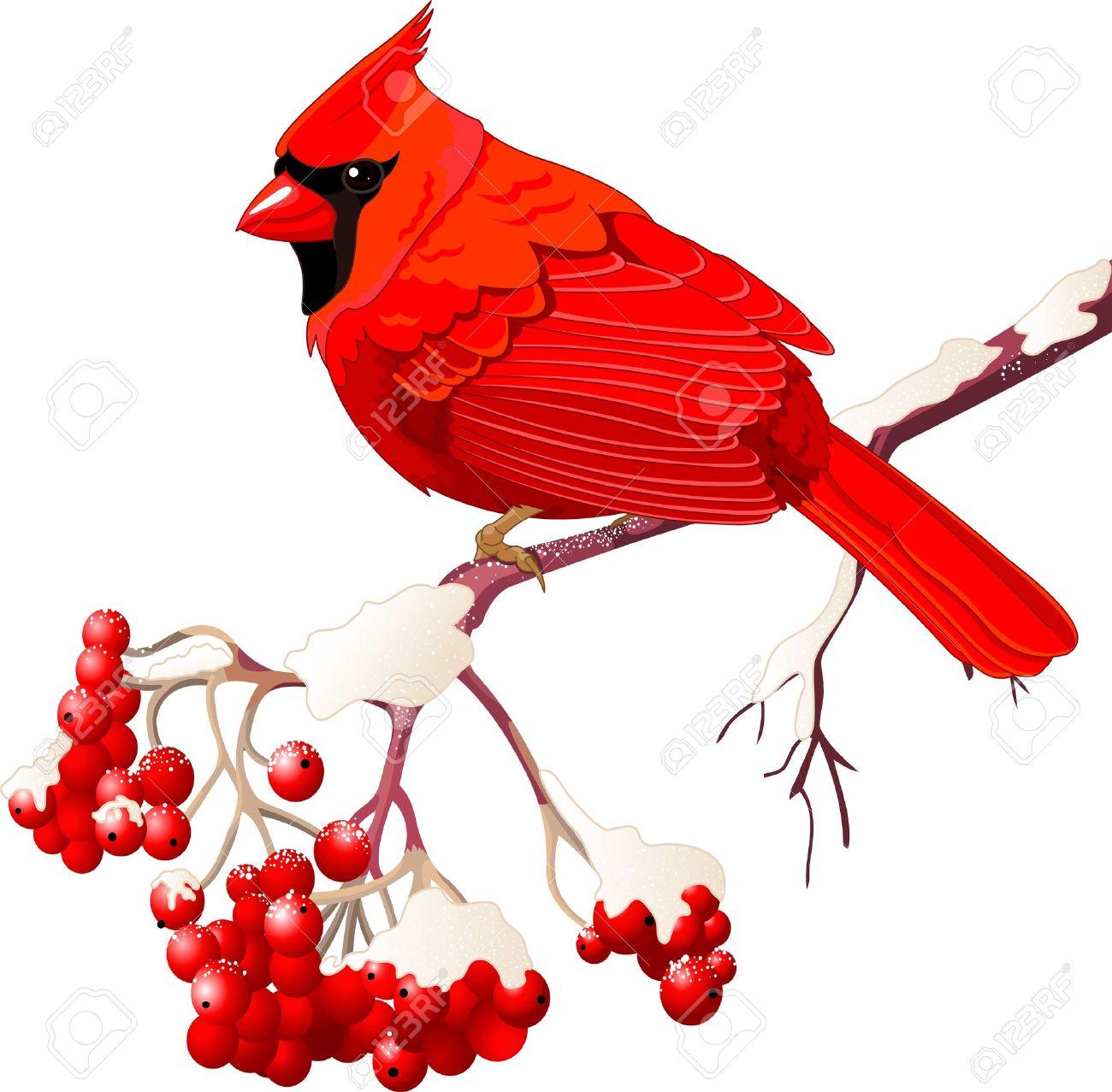 1300x1277 Cardinal Bird On Branch Clip Art Cliparts
