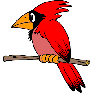 300x300 Cardinal Clipart, Cliparts Of Cardinal Free Download (Wmf, Eps