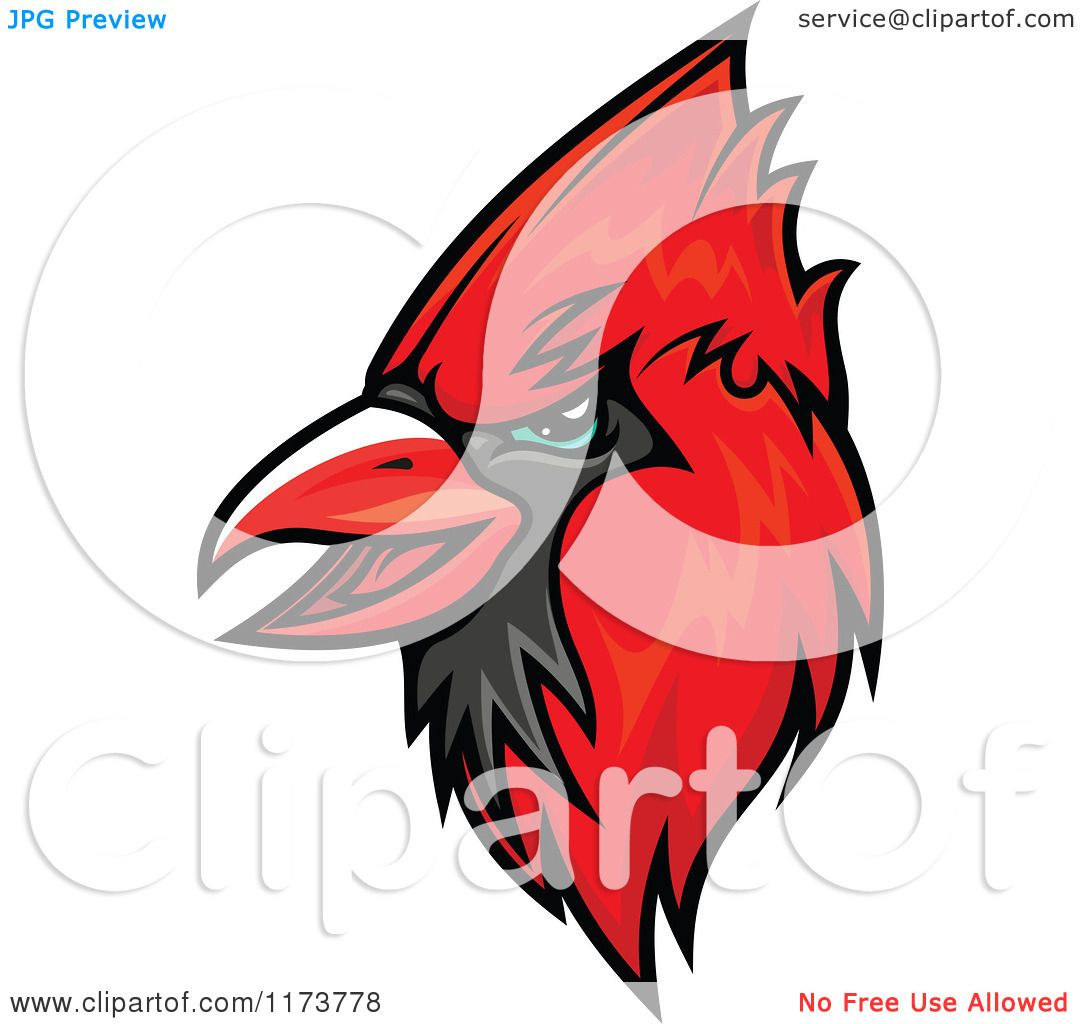 1080x1024 Clipart Of A Red Cardinal Head 2
